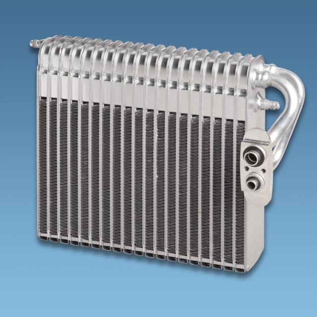 Delphi-Evaporator